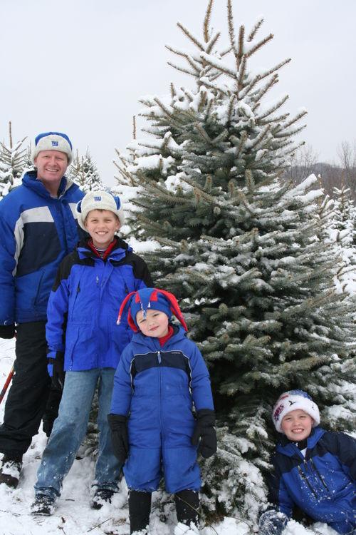 4 guys tree